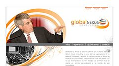 Global Nexus consulting