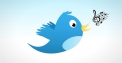 Twitter incorpora los tweets de audio